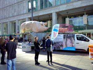 Sommerfest-berlin-veganverlag-Bild2