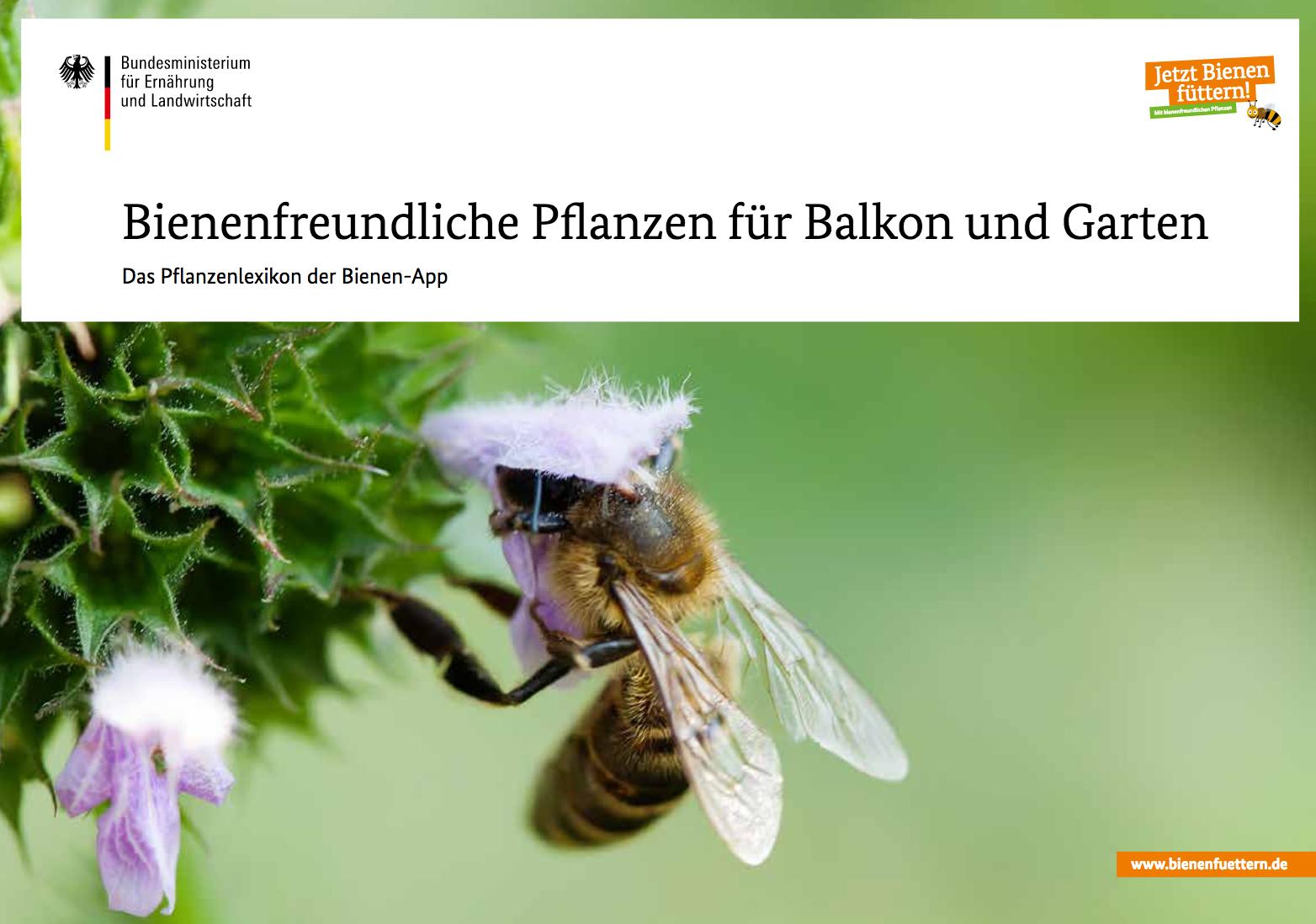 Bienenlexikon-BMEL-veganverlag-GruenerSinn-Verlag